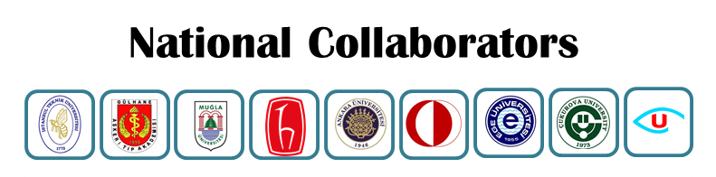 National_collaborators_logo